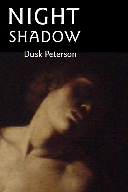 Cover for 'Night Shadow'