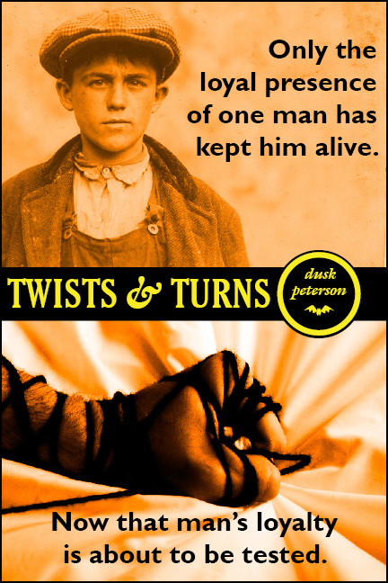 Cover for 'Twists and Turns'